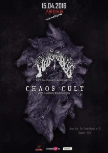chaos cult